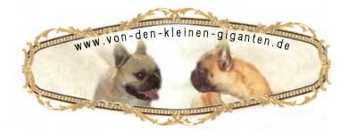 www.von-den-kleinen-giganten.de/