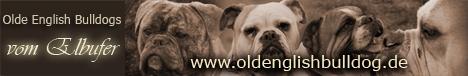 www.oldenglishbulldog.de